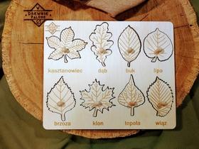 Liście naturalne